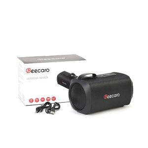 gf601-beecaro-speaker